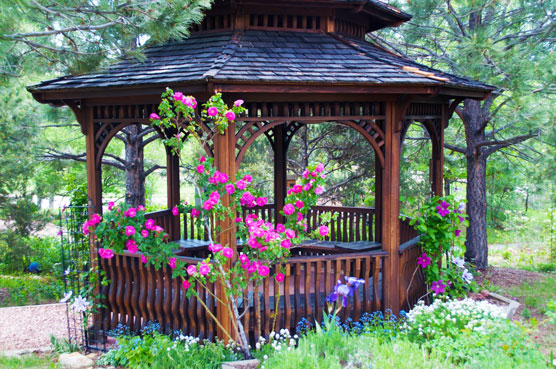 Gazebo in Flower